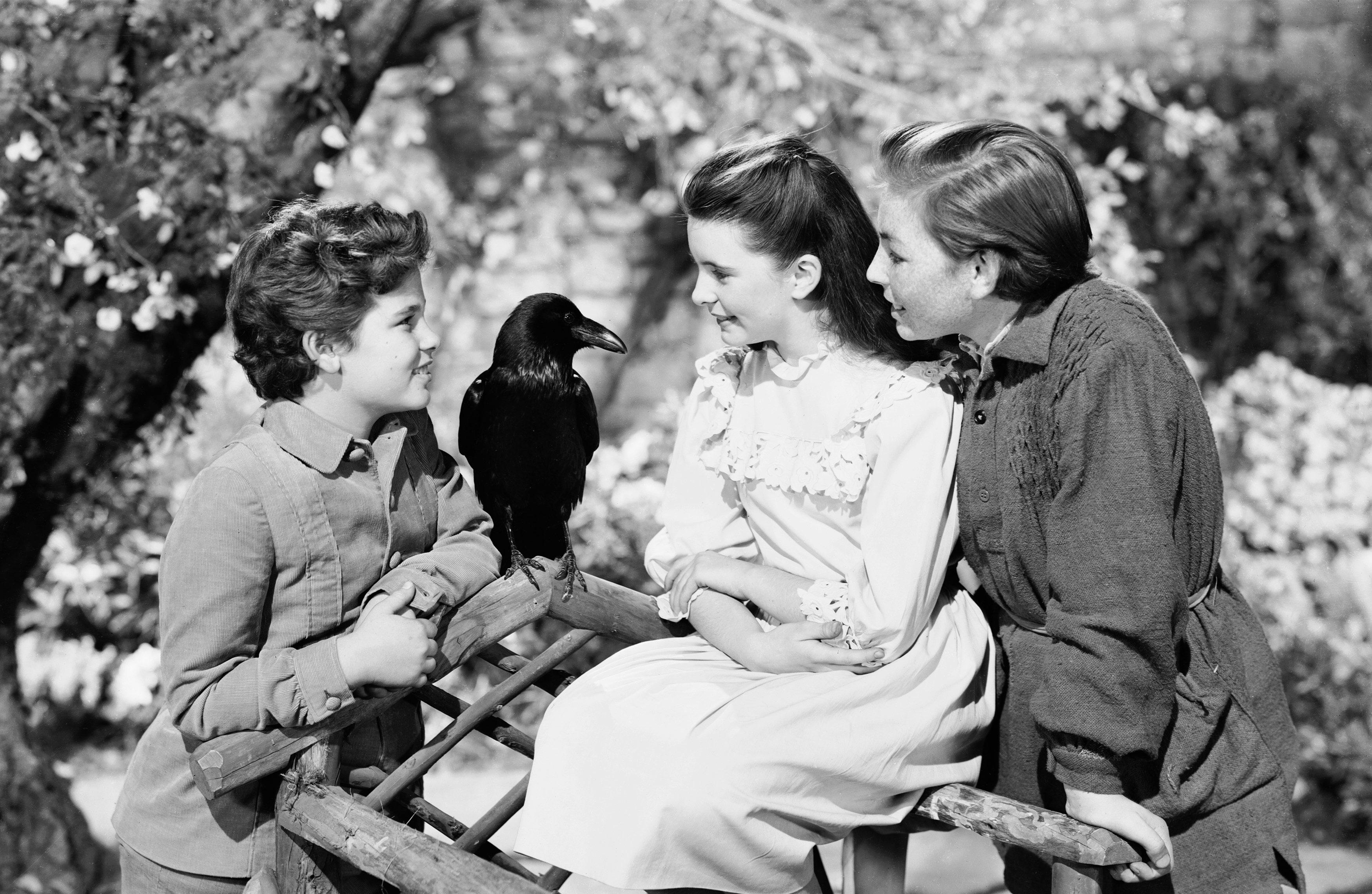 The Secret Garden 1949 Turner Classic Movies