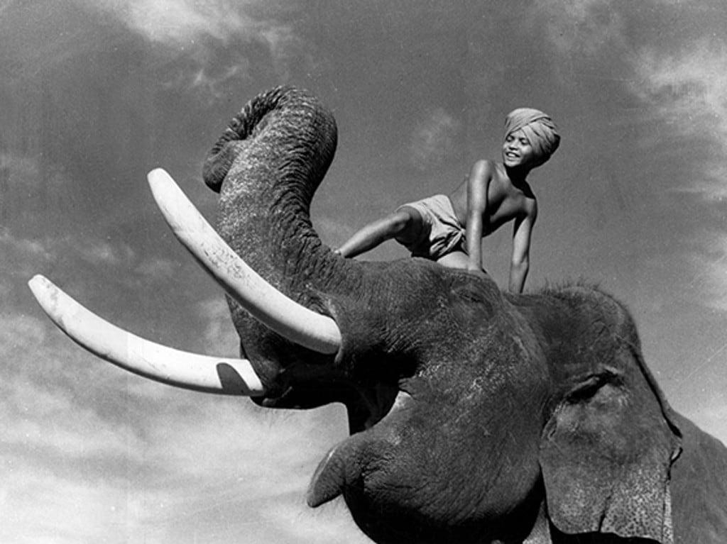 Elephant Boy (1937) - Turner Classic Movies