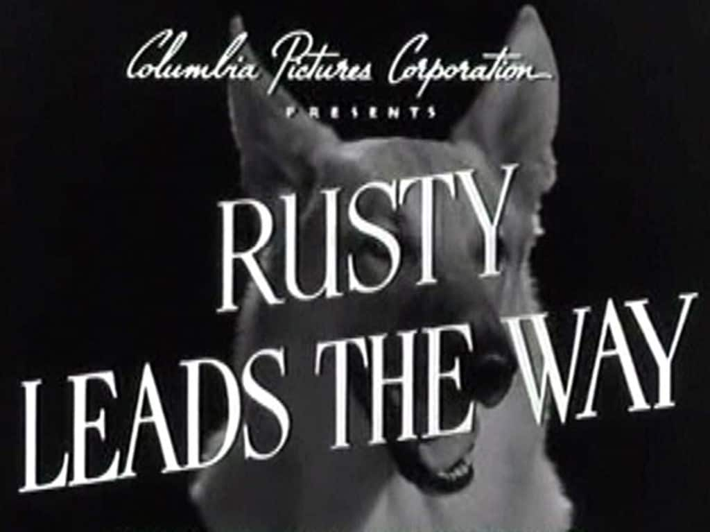 Rusty Leads the Way